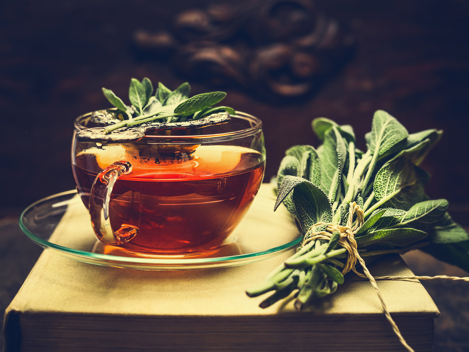Tisane: differenza tra decotti, infusi e macerati