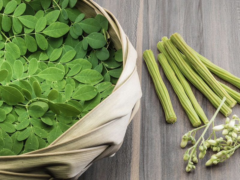 moringa proprieta benefici detox
