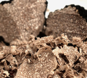 tartufo biologico
