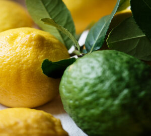 limoni lime differenze